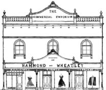 graphic of the Hammond and Wheatley building, home of Emporium Bellingen